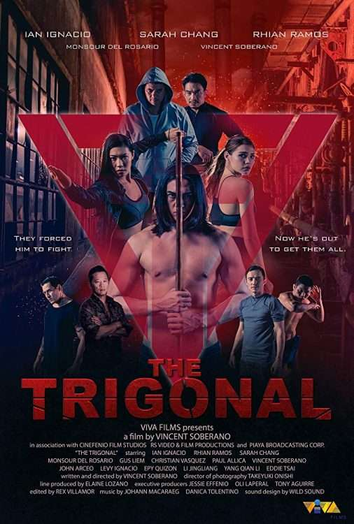The Trigonal: Fight for Justice Poster