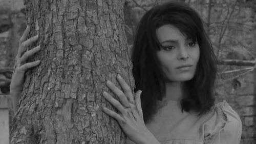 Woodlands Dark- IL DEMONIO 1963