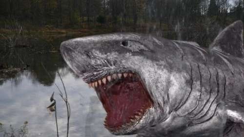 jurassic-shark-2-aquapocalypse 33
